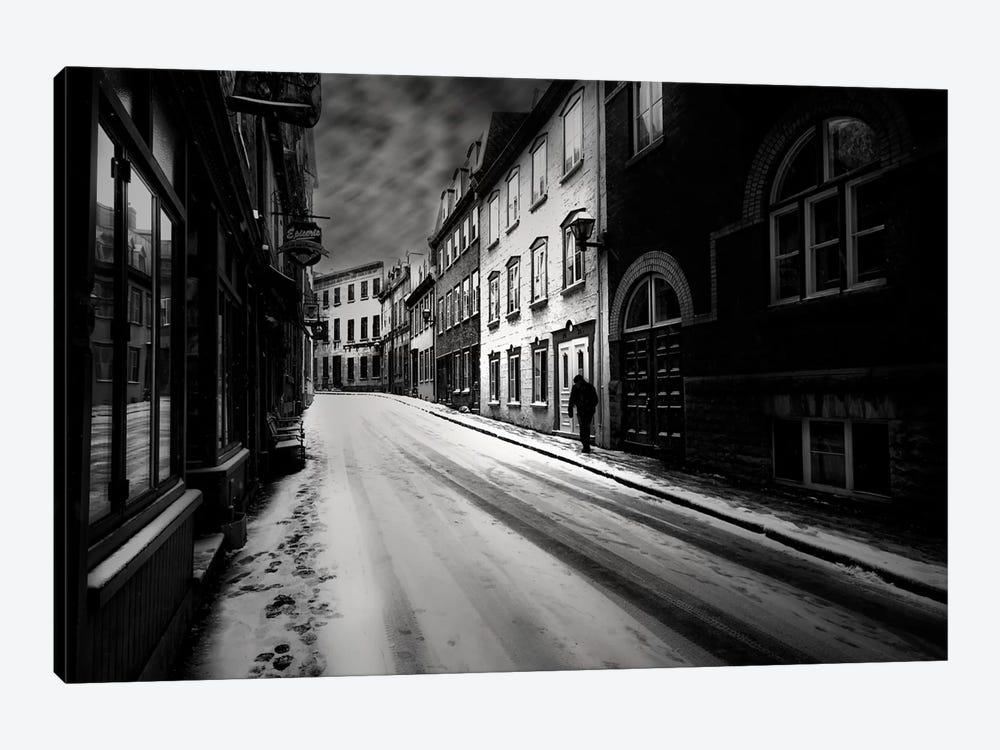Leave by David Senechal Photographie 1-piece Canvas Wall Art