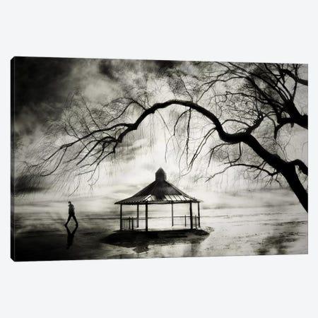 No More Music Canvas Print #OXM2363} by David Senechal Photographie Canvas Art Print