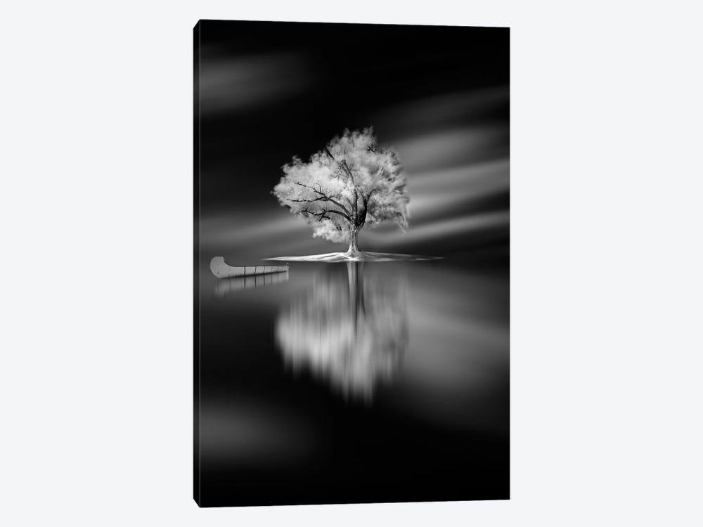 Quiet by David Senechal Photographie 1-piece Canvas Print