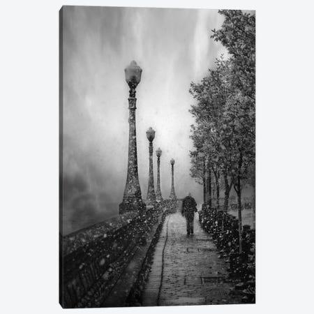 Spring Snow Canvas Print #OXM2367} by David Senechal Photographie Canvas Artwork