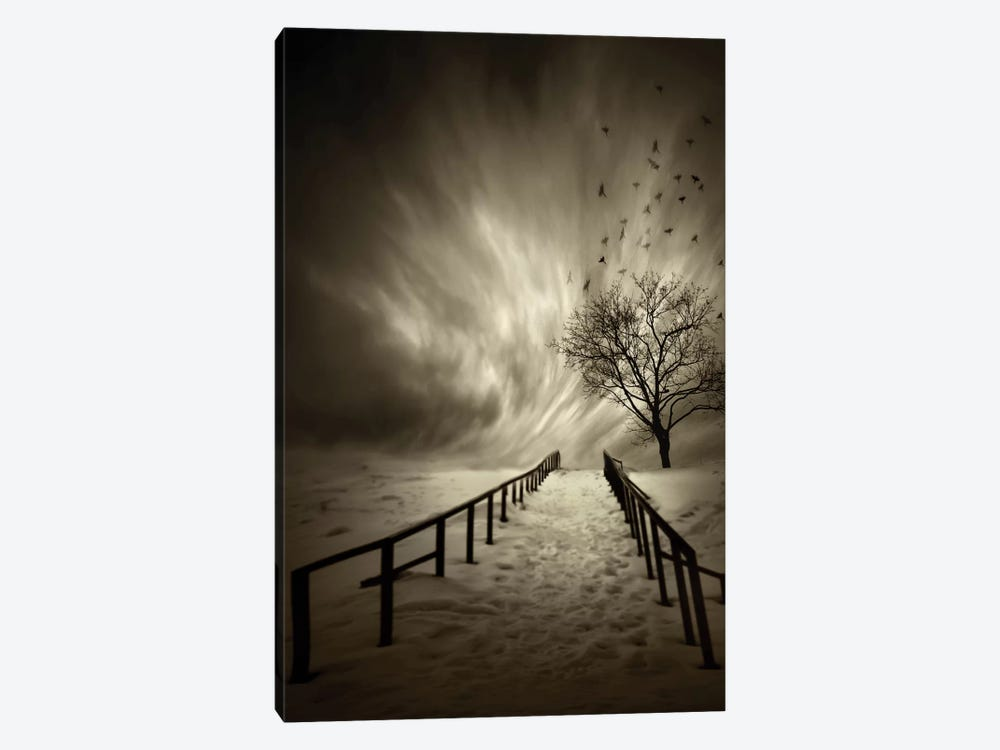 Stairs To The Sanctuary by David Senechal Photographie 1-piece Canvas Art Print