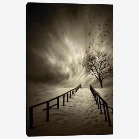 Stairs To The Sanctuary Canvas Print #OXM2368} by David Senechal Photographie Art Print