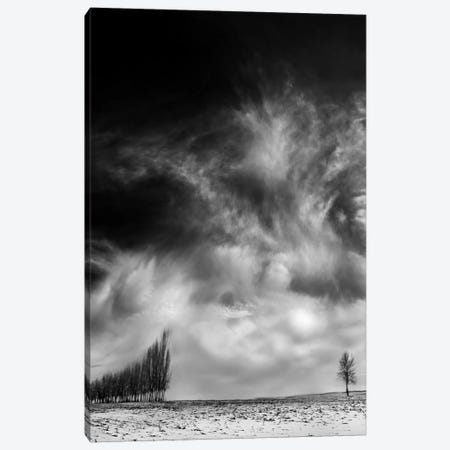 Unequal Combat Canvas Print #OXM2371} by David Senechal Photographie Canvas Artwork