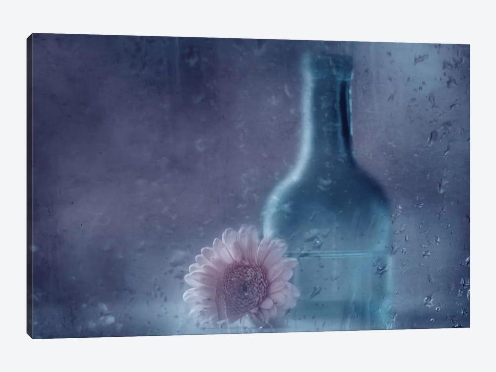 The Blue Bottle by Delphine Devos 1-piece Canvas Print