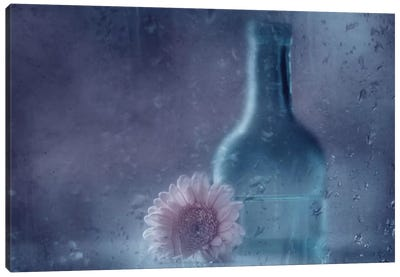 The Blue Bottle Canvas Art Print