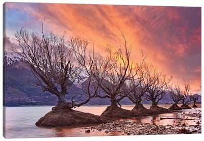 Glenorchy On Fire Canvas Art Print