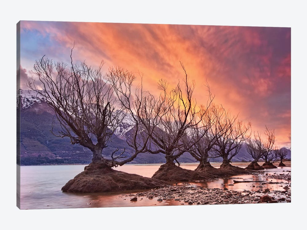 Glenorchy On Fire by Yan Zhang 1-piece Canvas Wall Art