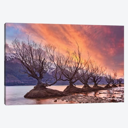 Glenorchy On Fire 3-Piece Canvas #OXM2383} by Yan Zhang Canvas Print
