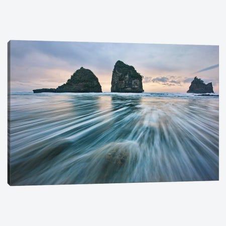Wild West Coast Canvas Print #OXM2389} by Yan Zhang Canvas Art Print