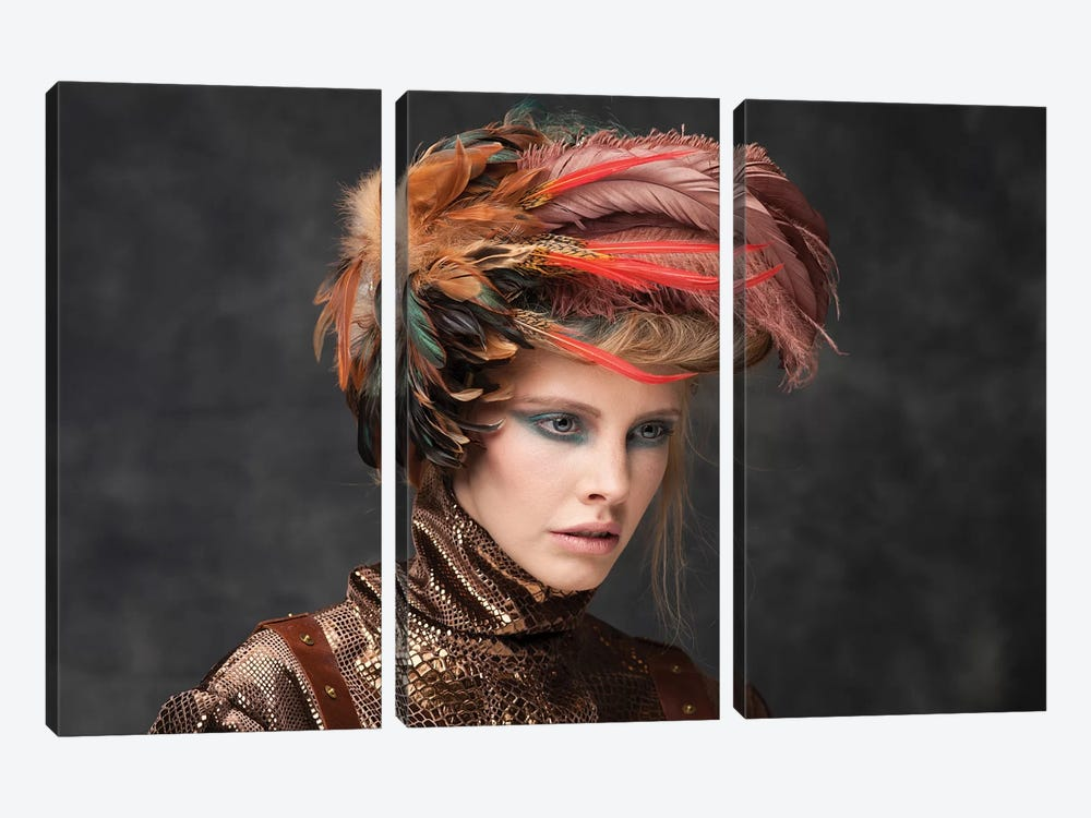 Feathers by Bartjan Nieuwerf 3-piece Canvas Print