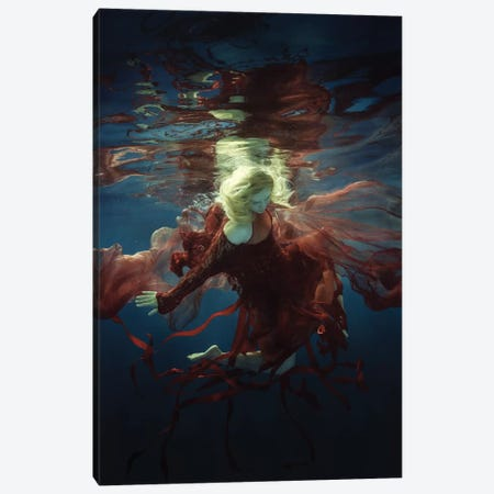 Supernova Canvas Print #OXM2418} by Dmitry Laudin Canvas Art Print