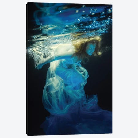Underwater Space Canvas Print #OXM2419} by Dmitry Laudin Canvas Art Print