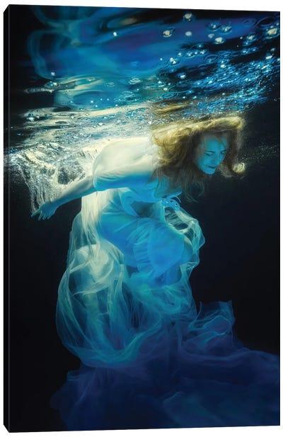 Underwater Space Canvas Art Print
