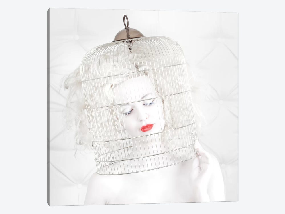 Birdcage Love by John Andre Aasen 1-piece Canvas Artwork