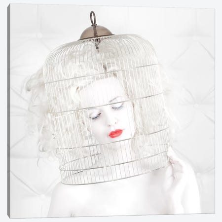 Birdcage Love Canvas Print #OXM2422} by John Andre Aasen Canvas Artwork