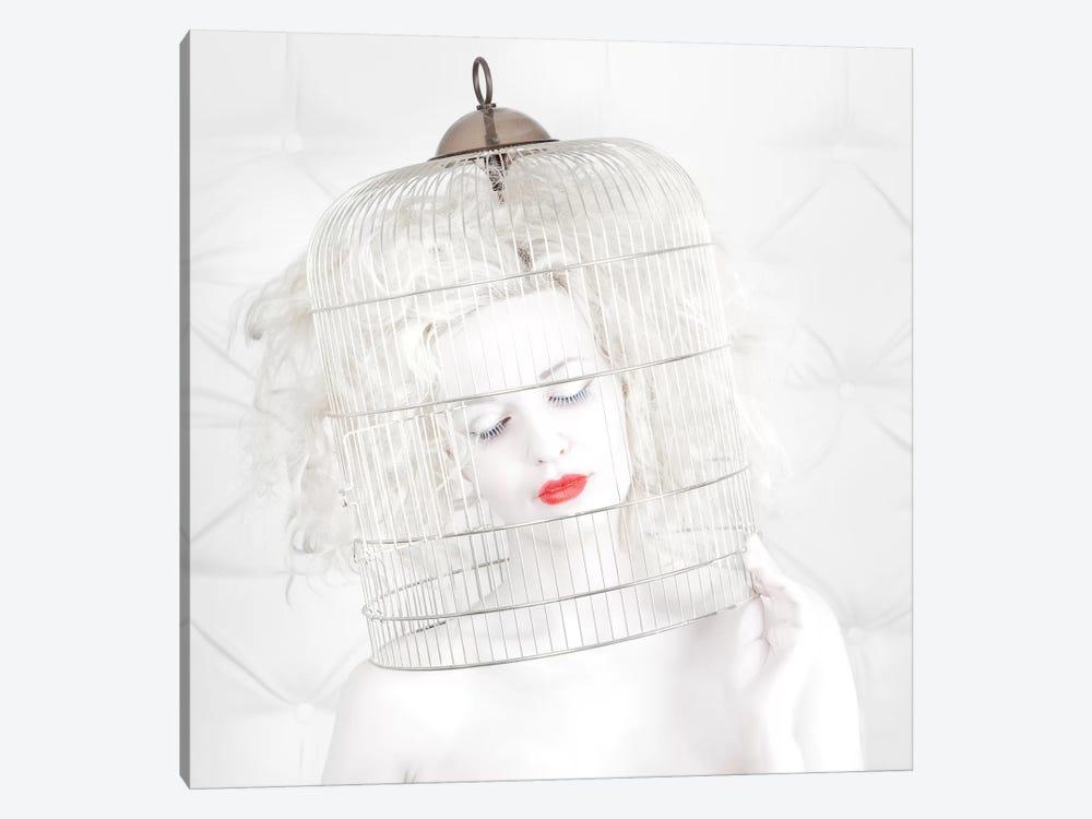 Birdcage Love by John Andre Aasen 1-piece Canvas Artwork