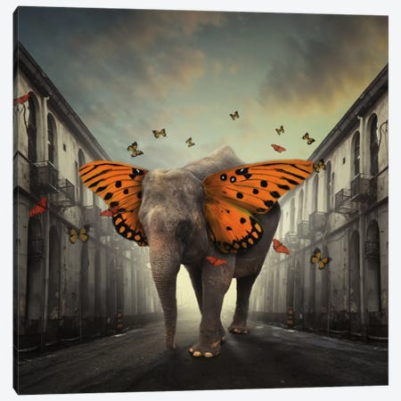 Butterphant Canvas Print #OXM2459} by hardibudi Art Print