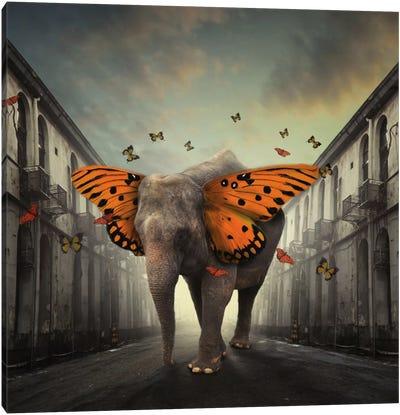 Butterphant Canvas Art Print