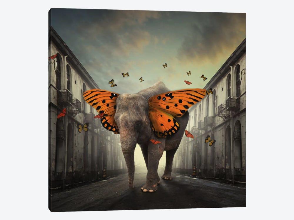 Butterphant by hardibudi 1-piece Canvas Art
