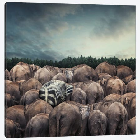 Dare To Be Different Canvas Print #OXM2461} by hardibudi Canvas Art
