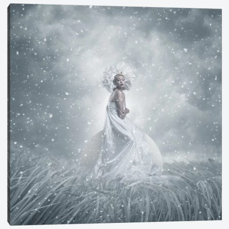 Snow White Canvas Print #OXM2465} by hardibudi Canvas Art Print