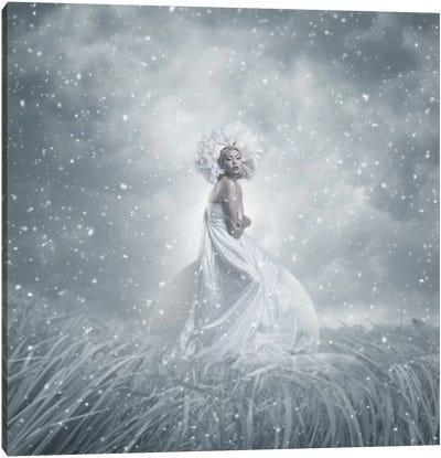 Snow White Canvas Print #OXM2465