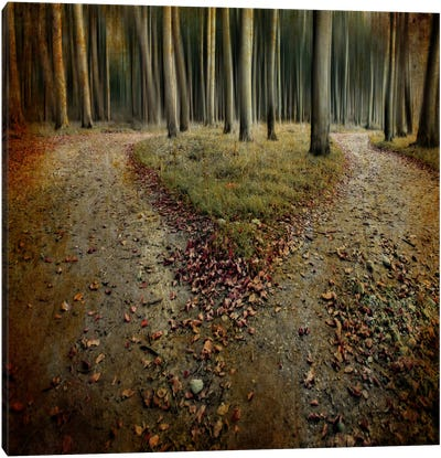 Another Lonely Heart In Haunted Woods Canvas Art Print