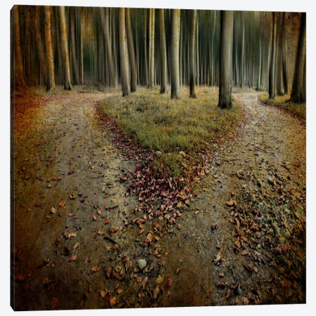 Another Lonely Heart In Haunted Woods Canvas Print #OXM2470} by Mario Benz Art Print