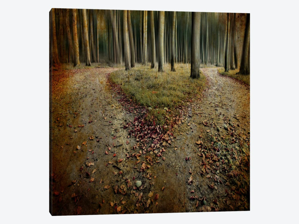 Another Lonely Heart In Haunted Woods by Mario Benz 1-piece Canvas Art Print