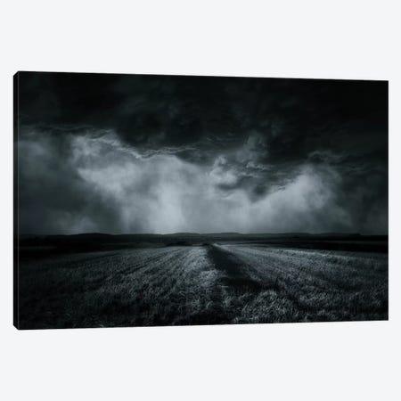 The Field Canvas Print #OXM2481} by Stefan Eisele Canvas Artwork