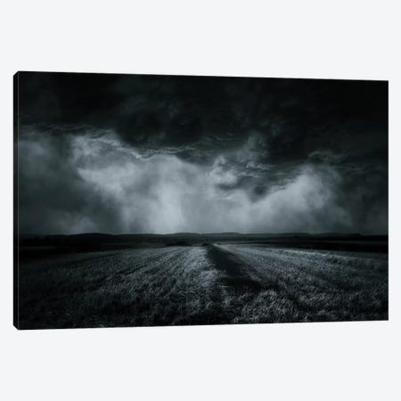 The Field Canvas Print #OXM2481} by Stefan Eisele Canvas Artwork