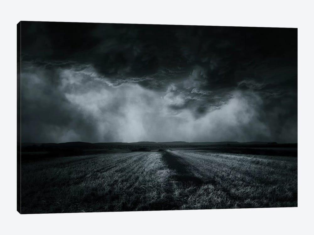 The Field by Stefan Eisele 1-piece Canvas Art Print