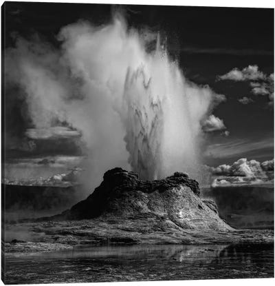 Castle Geyser Canvas Art Print