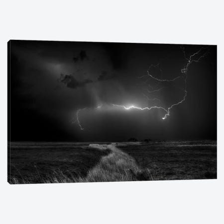 Sometimes The Sky Explodes Canvas Print #OXM2489} by Yvette Depaepe Canvas Wall Art