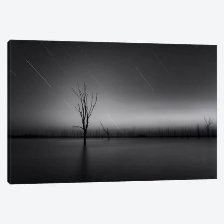 Alive Canvas Print #OXM248} by Taylor Franta Canvas Artwork