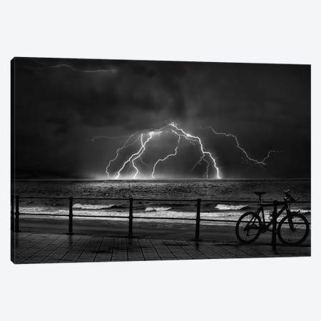 The Power Of Nature Canvas Print #OXM2491} by Yvette Depaepe Canvas Print