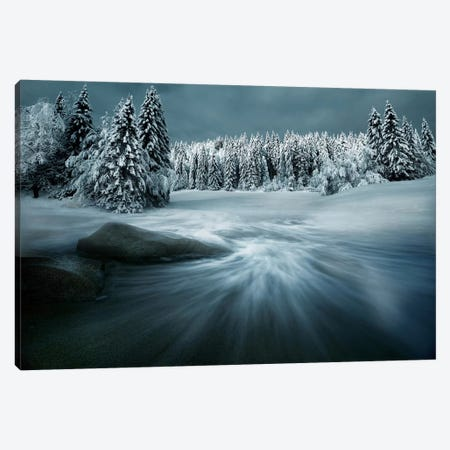 Just A Dream Canvas Print #OXM249} by Arnaud Maupetit Canvas Wall Art