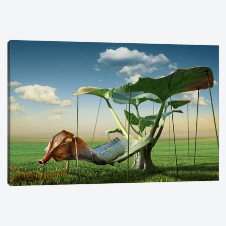 Surreal II Canvas Print #OXM2501} by Radoslav Penchev Canvas Print