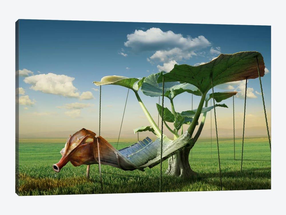 Surreal II by Radoslav Penchev 1-piece Canvas Art
