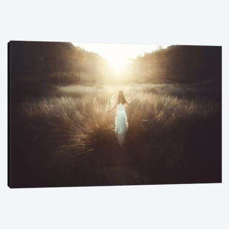 Chase The Sun Canvas Print #OXM2519} by Terry F Canvas Art