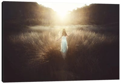 Chase The Sun Canvas Art Print