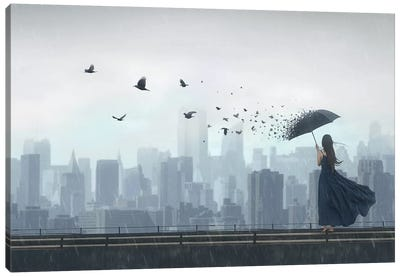 Fly Away Canvas Art Print
