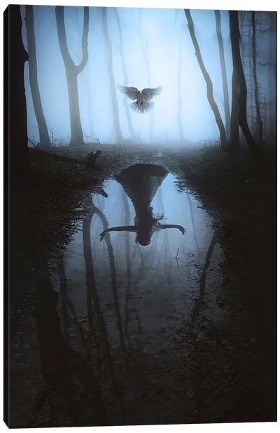 Fly To You II Canvas Art Print