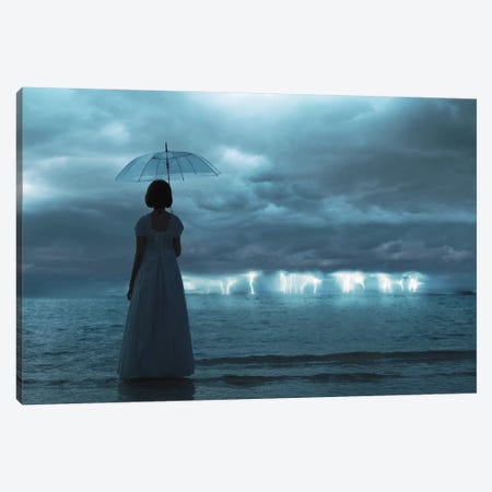 The Silent Sea Canvas Print #OXM2527} by Terry F Canvas Artwork