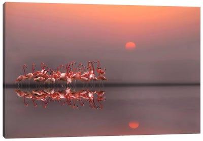 Purple Sunset Canvas Art Print