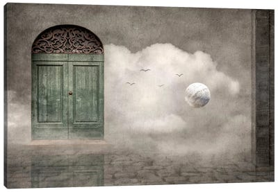 Secret Door Canvas Art Print