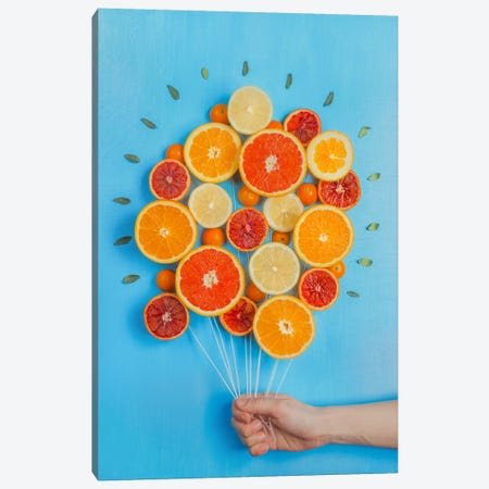 Congratulations On Summer! Canvas Print #OXM2571} by Dina Belenko Canvas Wall Art