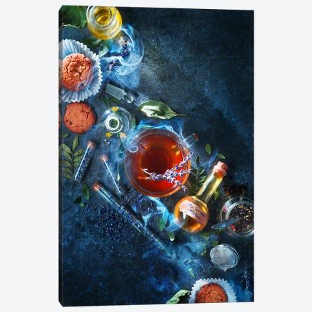 No Worries Mixture Canvas Print #OXM2575} by Dina Belenko Art Print
