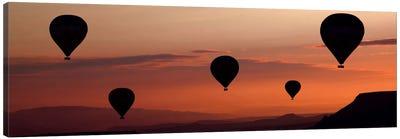 Balloons Canvas Art Print