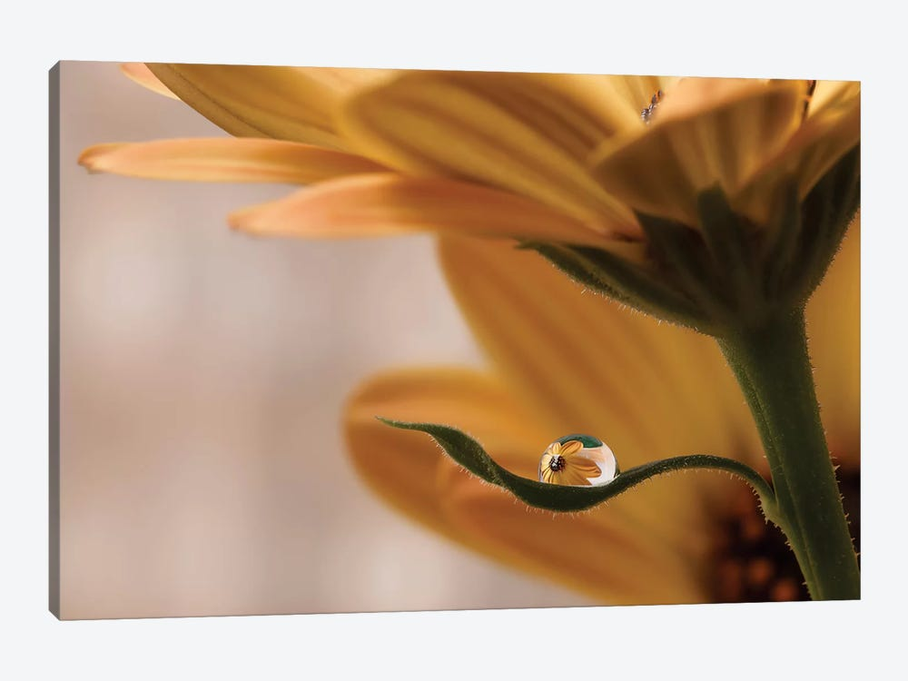 Protected by Heidi Westum 1-piece Canvas Print